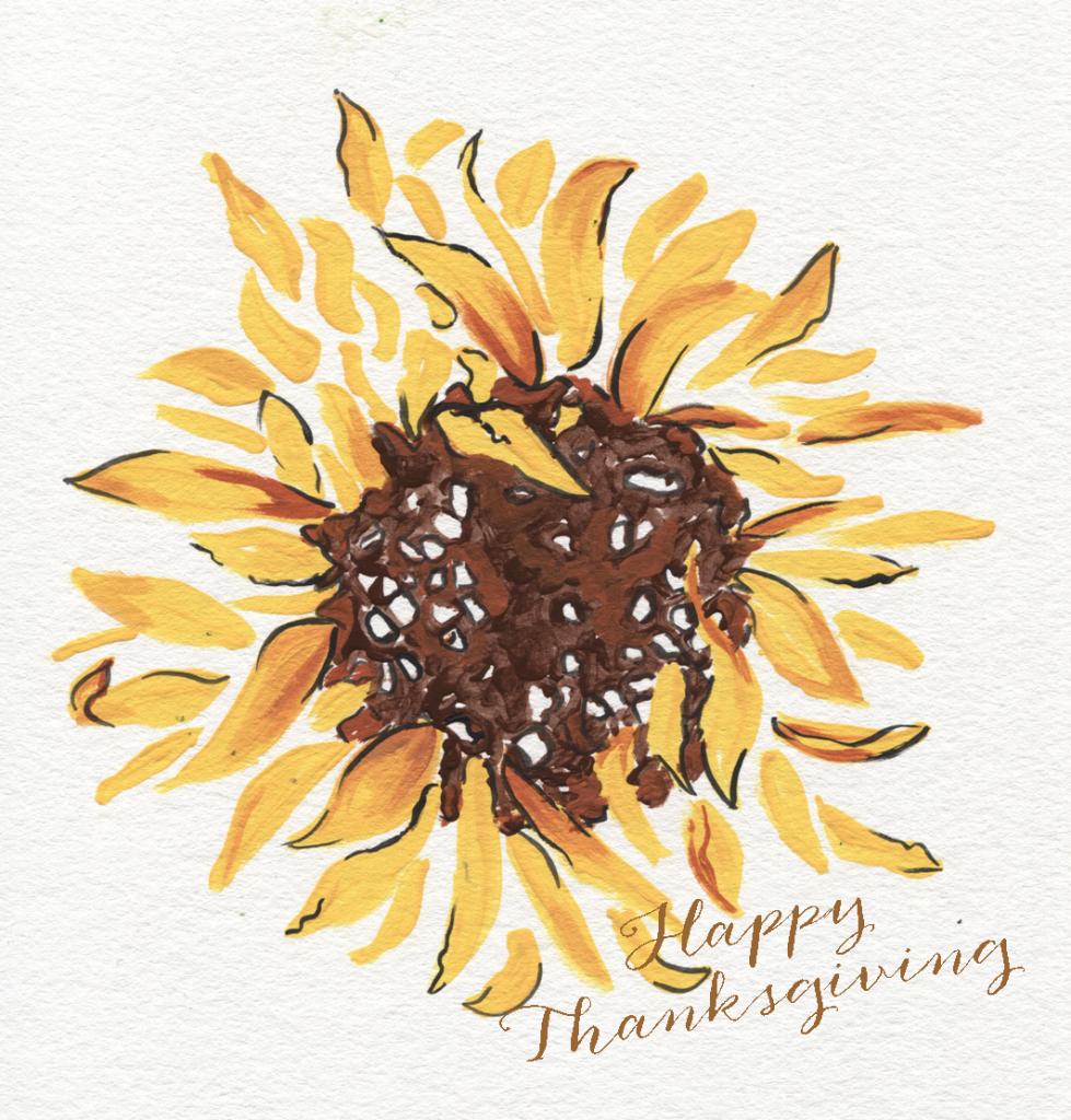 sunflower for thanksgiving
